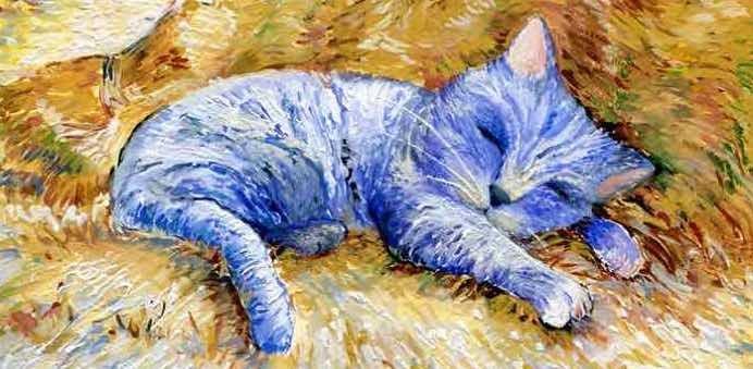 chat Van Gogh